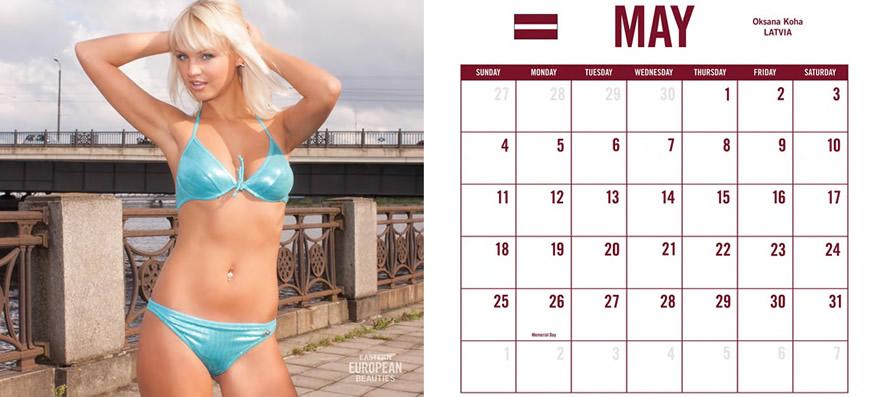 2007 wall bikini 12 x12 calendar american model swimsuit